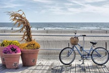 Boardwalk Life / by Florence Gray