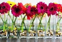 Florals, Color and Linens