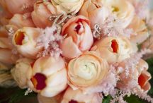 Sarah's Wedding / Might as well start planning now... / by Sarah Dickert