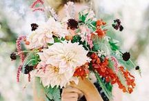 wedding | floral / by Kyle & Vanessa Photography