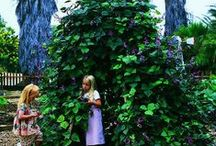 Kids Garden Project {homeschool} {PBL} / by Kari