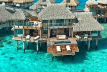 Perfect Hotels