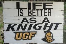 What Day Is It?!?! GAMEDAY!!!! / Go Knights!!!  / by Whitney Honeycutt