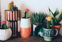 Ceramic Planters / A wide selection of ceramic planters that are unique & timeless. These ceramic pots are a good way to add color to your patio, balcony or your garden.