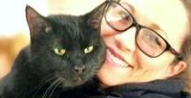 Black Cat Group Board / Welcome! I could not find a board specifically for Black & Mostly Black Cats in need.  So here it is!  If you want to join leave a note.  Welcome to all, Be kind and post black kitteos!