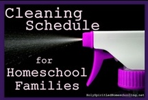 Homemaking Help for Homeschooling Families / Homemaking Help for Homeschooling Families: Cleaning, Chores, Recipes, Storage Ideas, and more! / by Jamerrill Stewart