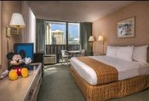 "Our Hotel / This Anaheim hotel is a ""10 Time Gold Award winner from Choice Hotels International"", the most prestigious award for excellence in cleanliness and customer service. We offer 284 spacious guestrooms, free high speed internet access, a year round heated outdoor pool, seasonal cabana bar, 2 restaurants, Sports Bar, gift shop, game room and 7000 square feet of meeting space. / by Clarion Anaheim"