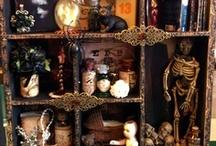 Cabinet of curiosities / by kym cowan