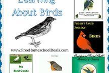 Free Homeschool Unit Studies / by Jamerrill Stewart