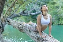 Yoga LIFE / Yoga &  Meditation / by Tamara