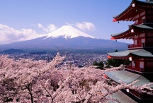 Beautiful Japan / by roco style