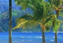 Hawaii / by Flora Herbert