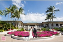 Hawaii Weddings / Weddings in Hawaii we have photographed recently