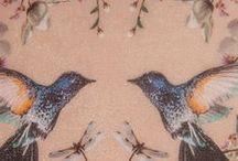love BIRDS / by Jen