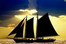 Boats & Ships / by Meg Li