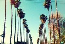 ABD | LA Native