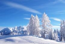 Winter World / by Susan Barr