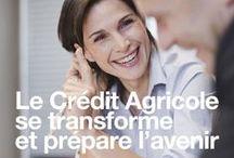 Rapport d'activité 2012 - 2013 Crédit Agricole SA / Découvrez le rapport d'activité de Crédit Agricole S.A. #banque #économie #finance
