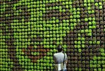 Jardins urbains / Crédit Agricole S.A. souhaite promouvoir le jardinage en zone urbaine en partageant des concepts innovants d'espaces verts : jardins partagés, jardins publics ou privés,...