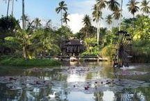 Tailandia con niños