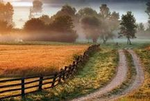 Pure Country / by Deb Martin-Webster