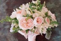 Wedding Flowers Bridal Bouquets / by Svetlana