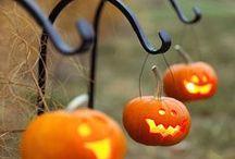 halloween. / by Shauna Marie