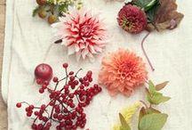 fleurs jolie