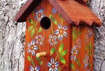 Birdhouse addiction