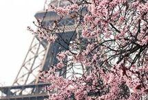 Paris / Paris: capital de ma mode