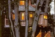 Lovely buildings / by Serena Haiku