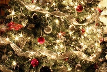 Christmas Time / by Serena Haiku