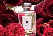 Fragrances | Beauty / by House of Fraser