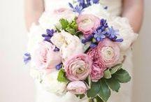 Wedding ideas / Ideas for anyone planning a wedding.
