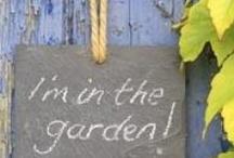 je suis dans le jardin... / by Céline L.