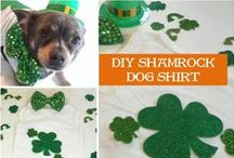 St. Patrick's Day Pets / Get more inspiration and DIY pet ideas on my blog, IrresistiblePets.net