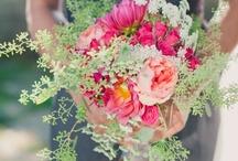 Wedding Wows! / by Sarah Retsch