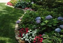 Gardens, Yards & Landscaping / Beautify your world... / by Becky Davis