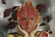 Fabulous Fall !!!! / by Sarah Retsch