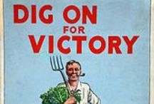 Victory Gardens / A very interesting piece of our horticultural history