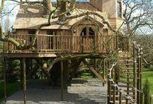 Inspiring Tree Houses