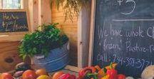 vegetable garden / Vegetable gardening.  How to grow vegetables and all things vegetable garden.