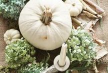 Fall Decorating Ideas / Enjoy some of the most beautiful fall decorating ideas out there!    This board includes DIY Fall decor crafts, fall mantel ideas, outdoor fall decor, fall front porch ideas, fall tablescapes, coastal fall decor, & more! Grab a cup of cider and cozy in for awesome autumn goodness!