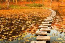 Paths, Bridges, Stairs