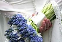 My dream wedding inspiration