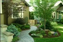 Garden Inspiration / by Kira Rockell