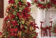 Christmas ~ O' Christmas TREE / by Pam Reynolds