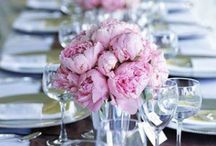 SmartGirl Weddings / SmartGirl Weddings is a Colorado-based affordable linens rental and design services business. Let me help you create a magical environment... / by Shelley G