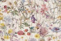 Pattern・Botanical