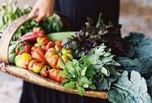 A Garden Please! / by Debbie Jackson